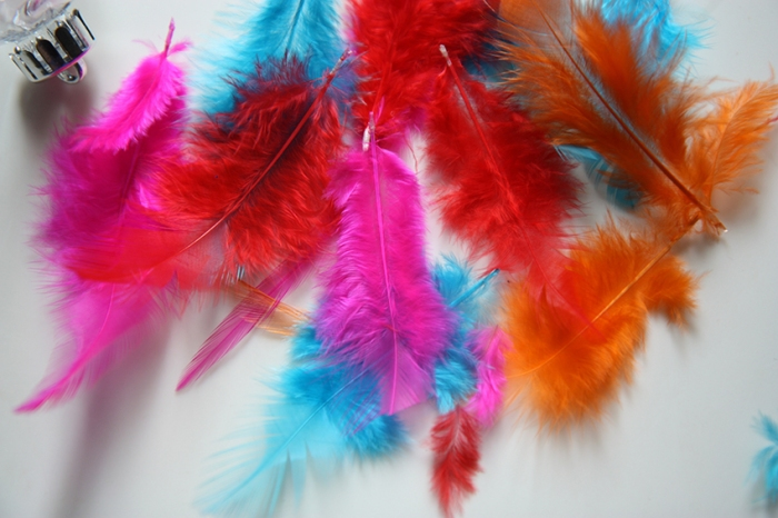 feather 1a